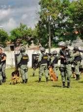 Agentes de segurança pública concluem o Curso de Cinotecnia